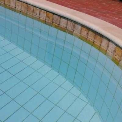 constructii-piscine (11)
